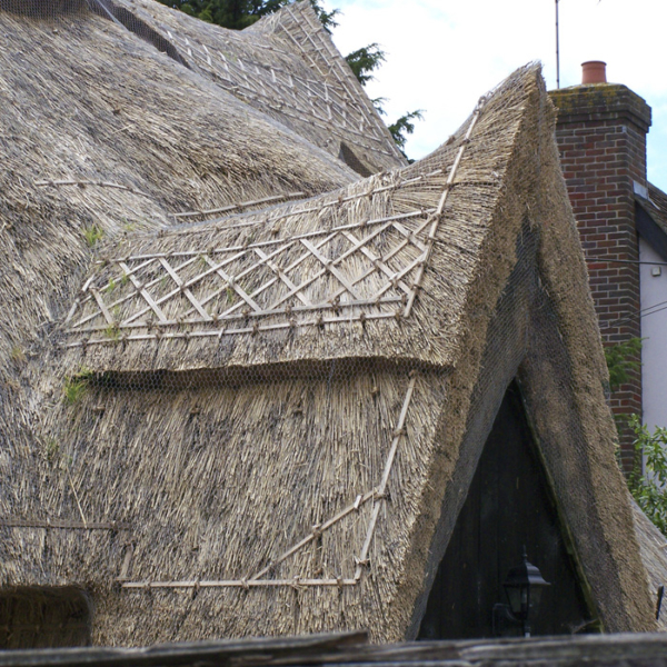 Thatched Period Property