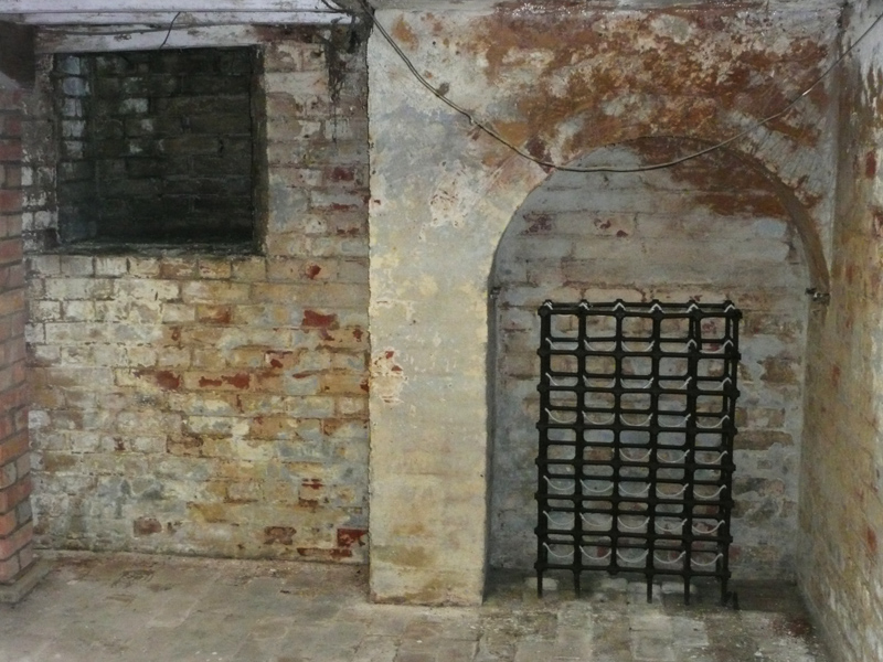 Cellar with mould present
