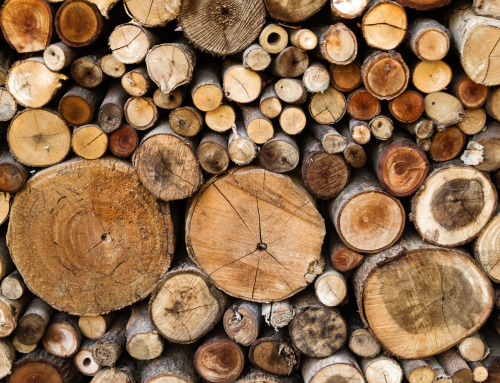 Choosing the right logs for your woodburning stove